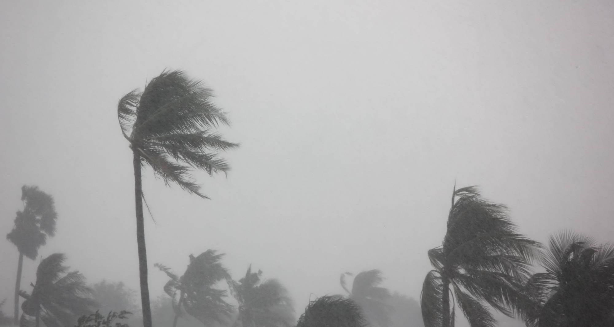 Comment gérer les risques cycloniques à la Réunion ?